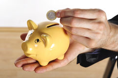 Hang, coin and piggybank Royalty Free Stock Photography