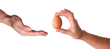 Hang giving egg Royalty Free Stock Image