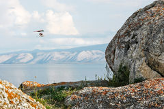 Hang glider flies over mountain lake. View through stones Royalty Free Stock Images