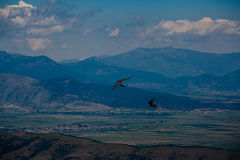Hang glider flying in the mountains in Makedonia Stock Photography