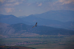 Hang glider flying in the mountains in Makedonia Stock Photos