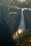 Hang glider in Yosemite National Park Stock Photography