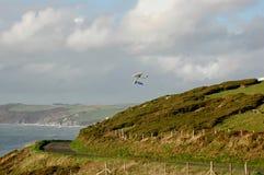 Hang Gliders Fotografia de Stock