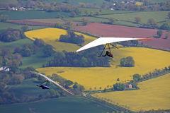 Hang Gliders flying Stock Images
