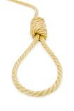Hang knot Stock Photography
