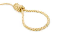 Hang knot Royalty Free Stock Image