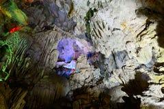 Hang Sung Sot Cave (överraskninggrotta), mummel skäller länge Arkivbild