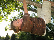Hang in there. Young boy hanging from a tree branch with a scared look on his face Stock Image