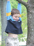 Hang In There, Baby. Young boy hanging from a tree limb royalty free stock photos
