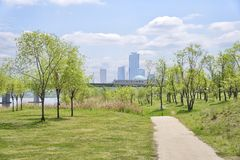 Hangang Park and buildings at Yeouido Royalty Free Stock Images