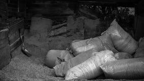 Hangar avec des sacs des déchets de bois Images libres de droits