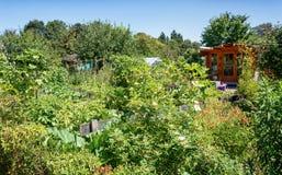 Hangar de jardin ssurrounded par un potager Photographie stock libre de droits