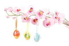 Hanged bright color easter eggs with bows on spring flower Royalty Free Stock Photography