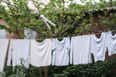 Hanged clothes at garden. In order to dry Stock Photography