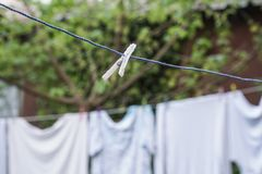 Hanged clothes at garden. In order to dry Royalty Free Stock Photos
