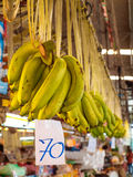 Hanged green banana in the market Stock Photography