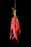 Hanged Sear Chili Peppers Royalty Free Stock Photos