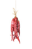 Hanged Sear Chili Peppers Stock Photo