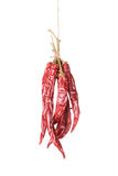 Hanged Sear Chili Peppers Stock Image