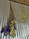 Hangend droge bloem op oud galvaniseer muur stock foto