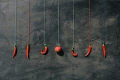 Hangend op kleurrijke koorden vele roodgloeiende Spaanse peperpeper en appel royalty-vrije stock foto