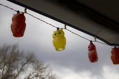 Hangend Owl Lights Royalty-vrije Stock Afbeelding