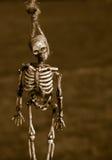 Hangend skelet royalty-vrije stock foto