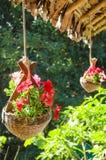 Hangende bloemen Royalty-vrije Stock Afbeeldingen