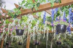Hangende bloemen en installaties Royalty-vrije Stock Foto's