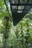 Hangende brug Costa Rica Stock Afbeeldingen