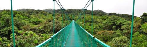 Hangende brug over wolkenbos royalty-vrije stock foto's