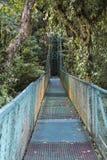 Hangende brug over wolkenbos stock foto