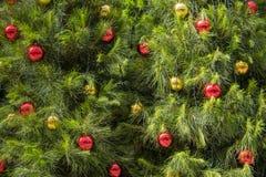 Hangende Kerstmisballen op boom Royalty-vrije Stock Foto