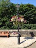 Hangende manden op lamppost Stock Foto