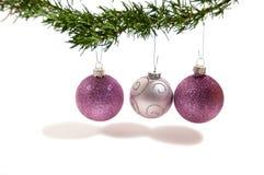 Hangende ornamenten onder een boom Stock Afbeeldingen