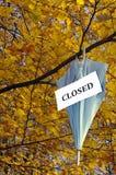 Hangende paraplu Stock Afbeelding