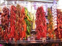 Hangende peper en kruiden stock foto