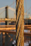 Hanger cable at the Brooklyn Bridge Royalty Free Stock Images