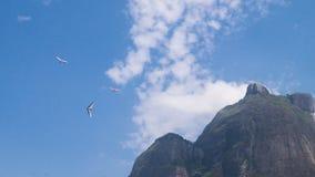 Hanggliders - Rio de Janeiro, Brazil. Hanggliders close to Pedra da Gavea in Sao Conrado Beach. Rio de Janeiro, Brazil Stock Photography