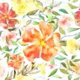 Hangin от свежим шикарным текстурированного ярким блеском ба вышивки ягод Стоковая Фотография RF