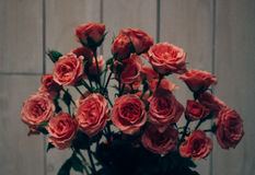 Hangin dei cuori del ` s del biglietto di S. Valentino sul fondo bianco di legno del cavo naturale Retro stile fotografie stock