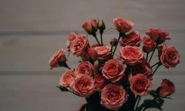Hangin dos corações do ` s do Valentim no fundo branco de madeira do cabo natural Estilo retro imagens de stock royalty free