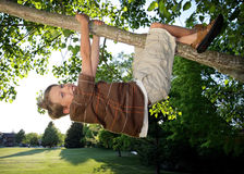 Hanging. Happy Caucasian boy climbing a tree and hanging from a tree limb in a park Stock Photo