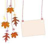 Hanging Autumn Foliage Banner Royalty Free Stock Image