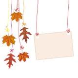 Hanging Autumn Foliage Banner Royalty Free Stock Image
