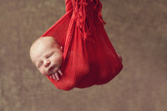 Hanging baby Royalty Free Stock Image