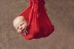 Hanging baby Royalty Free Stock Image
