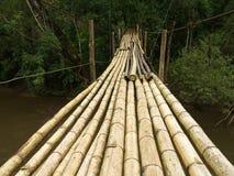 Hanging bamboo bridge Royalty Free Stock Photos