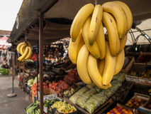 Hanging Bananas. Hanging ripe bananas at farmers market in Skopje, Macedonia, Europe Stock Photos