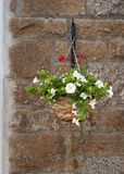 Hanging basket of flowers Stock Photography